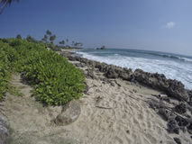 A dream beach at the Indian Ocean Stock Image