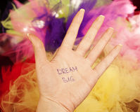 Dream big. Written on a palm stock images
