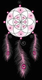 Dream catcher, feathers royalty free stock image