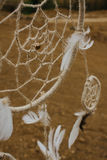Dream catcher hanging  in a dry land.  Royalty Free Stock Photography
