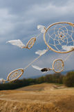 Dream catcher hanging  in a dry land.  Stock Image
