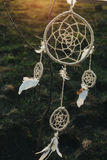 Dream catcher hanging from a tree in a field at sunset Stock Photography