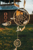 Dream catcher hanging from a tree in a field at sunset Royalty Free Stock Photos