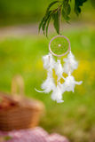 Dream catcher outdoors. In  garden Royalty Free Stock Images
