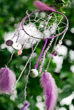 Dream catcher Royalty Free Stock Images