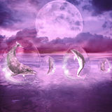 Dream Of Dolphins. Dolphins swimming in water bubbles. The sea and the landscape is purple Royalty Free Stock Images