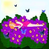 Dream fairies Stock Photos