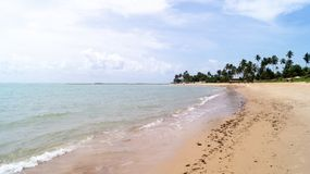 Dream green beach in Maceió royalty free stock image