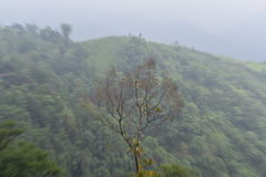 Dream land Hills. Beautiful hills in india n Stock Images