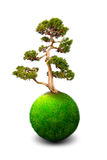 Dream land planet. With green tree Royalty Free Stock Photos