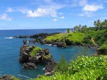 Dream land sea. Hawaiian sea with gulfs, palms and rocks Royalty Free Stock Images