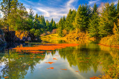 Dream lanscape. Nice color harmony of the autumn season in landscape, blue deep sky, green, orange, yellow colors of nature stock images