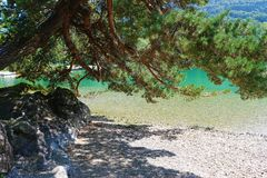 A dream place to relax next to a turquoise lake. A dream place to relax in the shade of a pine tree next to a turquoise lake, on a clear summer day stock image