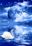 Dream scene. White swan swimming in a water pond with a big full moon above it stock illustration