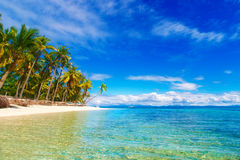 Dream scene. Beautiful palm trees above the white sand beach, th Royalty Free Stock Photo