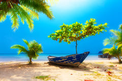 Dream scene. Old boat lying under beautiful palm trees on the be Royalty Free Stock Images