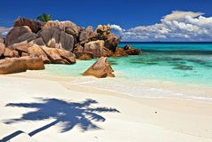 Dream seascape view. With a big stones and palmtree, Seychelles, La Digue island Royalty Free Stock Photography