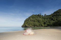 Dream secret beach and flowers  at Tarutao National Park, Thailand Stock Image