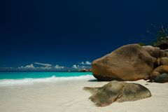Dream on Seychelles Royalty Free Stock Photos