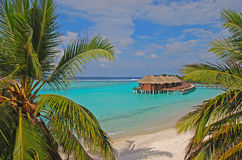 Dream Tropical Island Vacation on Overwater Bungalow. Dream Tropical Island Holiday in Overwater Bungalow on Blue Turquoise Water with two coconut trees leaves Royalty Free Stock Photography