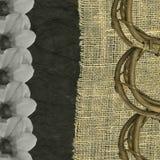 Dream weaver Stock Photos