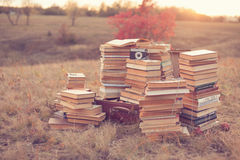 Dream of well-read. Dream of well read. Hipster dream royalty free stock images