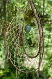 Dreamcatcher在森林里 免版税图库摄影