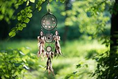 Dreamcatcher,在森林僧人的美国当地护身符 库存照片