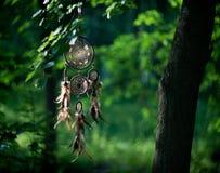 Dreamcatcher, американский родной талисман в шамане леса Стоковые Фото
