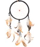 Dreamcatcher. Isolated on white background Royalty Free Stock Photography