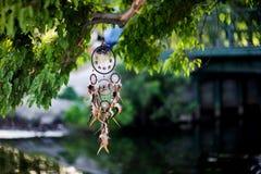 Dreamcatcher, amerikanisches gebürtiges Amulett im Waldmedizinmann Lizenzfreie Stockbilder