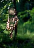 Dreamcatcher, amerikanisches gebürtiges Amulett im Waldmedizinmann Lizenzfreie Stockfotografie