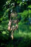 Dreamcatcher, amerikanisches gebürtiges Amulett im Waldmedizinmann Stockfotografie