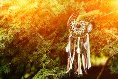 Dreamcatcher, amuleto indigeno americano sul tramonto shaman immagini stock libere da diritti
