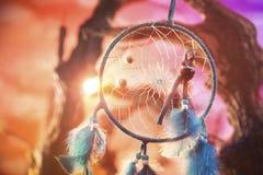 Dreamcatcher auf einem Wald bei Sonnenuntergang Lizenzfreie Stockfotografie