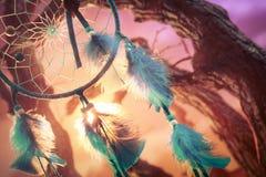 Dreamcatcher auf einem Wald bei Sonnenuntergang Stockfotografie
