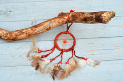Dreamcatcher on a branch with a old wood background Stock Images