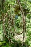 Dreamcatcher en el bosque Fotografía de archivo libre de regalías