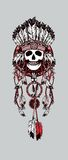 Dreamcatcher with feathers. Vector illustration Indian totem skull headdress with feathers Stock Images