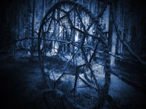Dreamcatcher in the forest. On a tree Stock Photography