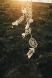 Dreamcatcher hanging from a tree in a field at sunset Stock Image