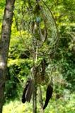 Dreamcatcher i skogen Arkivfoto