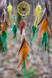 Dreamcatcher made of feathers, leather, beads, and ropes Stock Image