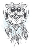 Dreamcatcher vector illustration with owl feathers Stock Images