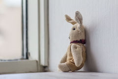 Dreamily annoyance alone bunny at window. Royalty Free Stock Photos