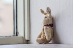 Dreamily ergernis alleen konijntje bij venster royalty-vrije stock foto's