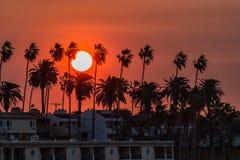 Dreamin de la Californie photographie stock libre de droits