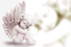Dreaming Angel. With blurred mirror image stock images