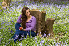Dreaming in a bluebells forest Royalty Free Stock Photography