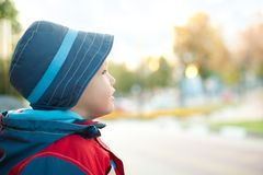 Dreaming boy in hat and wind-cheater. Outdoor royalty free stock image